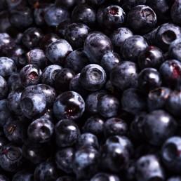 Vimergy Wild Blueberry
