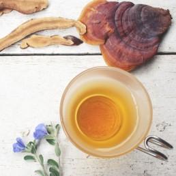 flower-of-life-vimergy-reishi-tea-cup