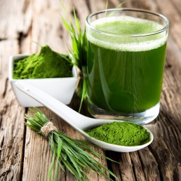 flower-of-life-category-greens-wild-foods